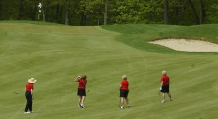 2015 Golf image